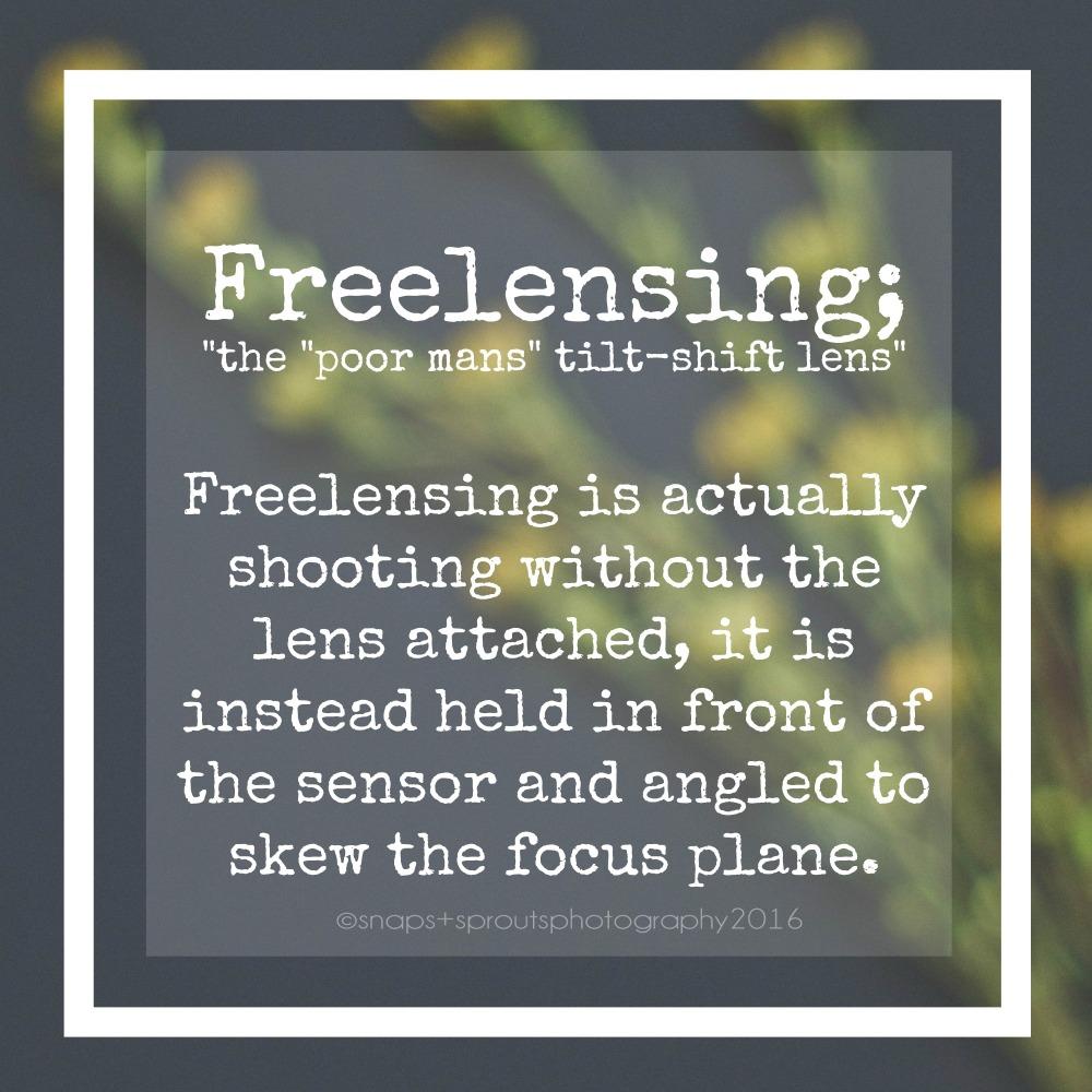 Freelensing